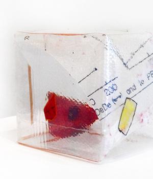 Paula's Box