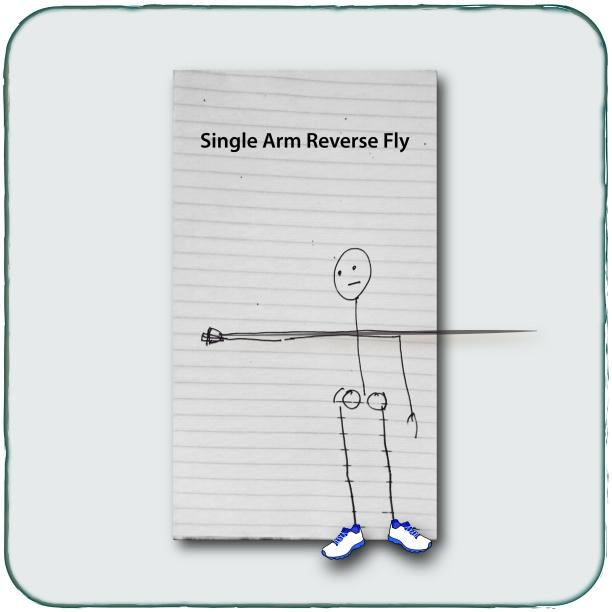 Single Arm Fly
